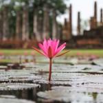 voyage thailande - Sukhotai
