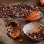 guadeloupe cacao