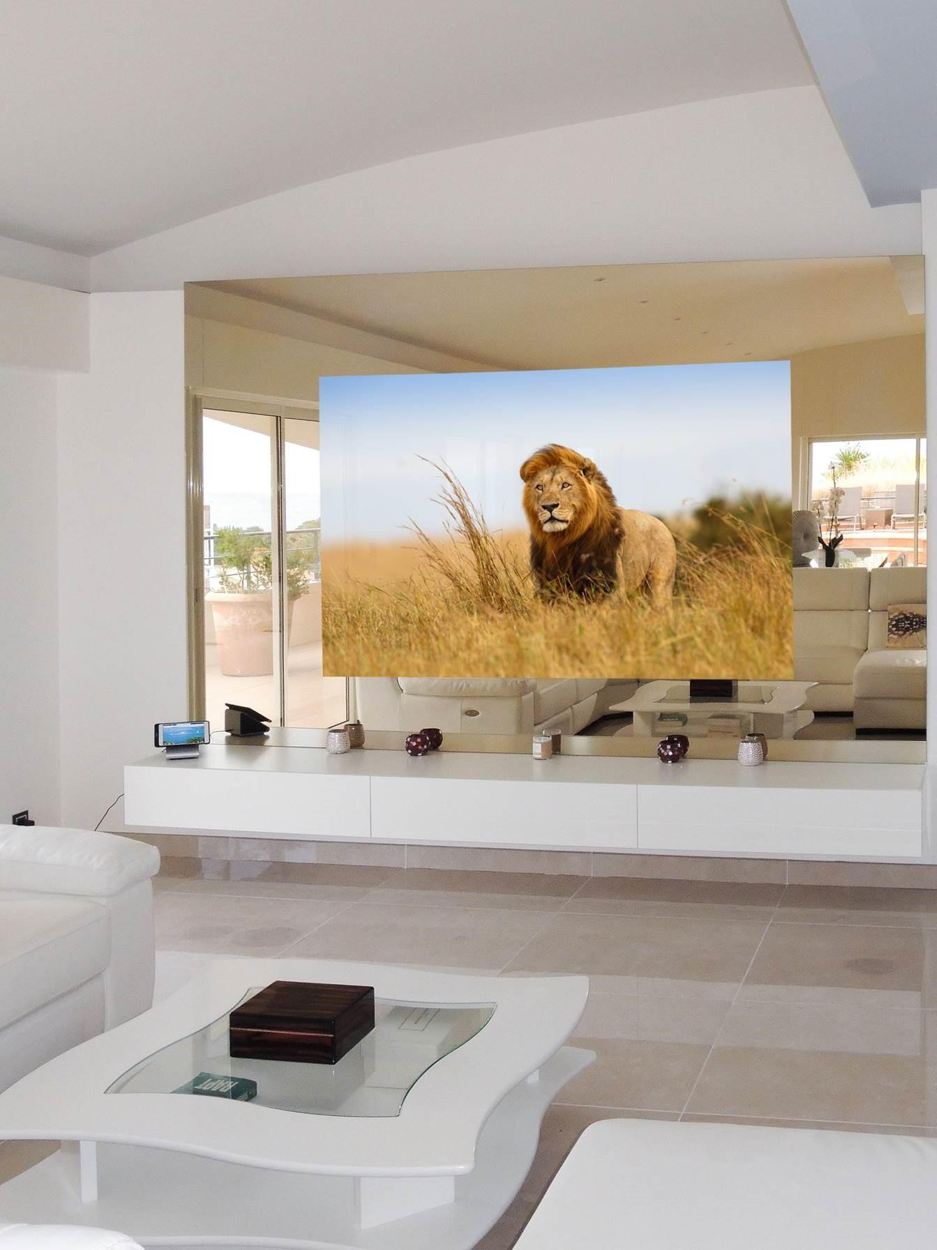 6-TV 65''-Miroir 3M-2.5M