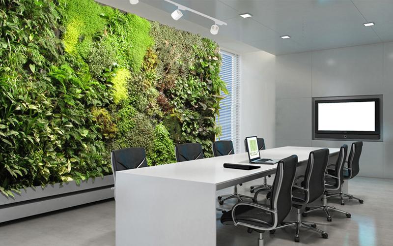 Bien-être au bureau : le mur végétal